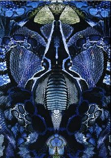 Black Snake print  Alexander McQueen 1969-2010  Plato's Atlantis, spring/summer 2010