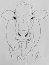 Picture consequence for step-by-step cow drawing face. Animal Art Prints, Animal Drawings, Art Drawings, Drawing Art, Cow Drawing Easy, Drawing Tips, Anime Face Drawing, Drawing Faces, Learn Art