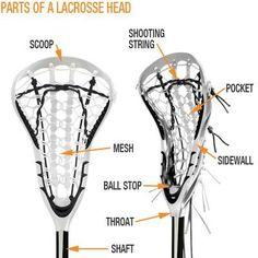 Lacrosse Rules Lacrosse Sport, Lacrosse Quotes, Lacrosse Gear, Girls Lacrosse, Basketball Quotes, Women's Basketball, Lacrosse Backpacks, Softball Problems, Soccer Memes
