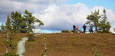 Riisitunturin kansallispuisto Golf Courses, Country Roads