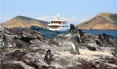 Galapagos Islands   Ecuador   South America   Galapagos Catamaran Or Yacht Adventure Cruise
