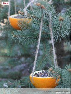 Easy bird feeder