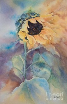 Glorious Sunflower Painting by Kate Bedell - Glorious Sunflower Fine Art Prints and Posters for Sale