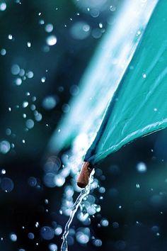 Definitivamente un día lluvioso y extrañando... Reasons Four Loving Seasons : Photo
