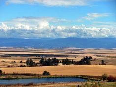 Cottonwood Idaho