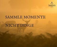Sammle #Momente, nicht Dinge... #Dankebitte #Sprüche #Gedanken #Weisheiten #Zitate