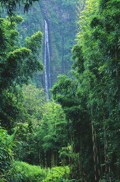 Waimoku Falls, a majestic 400-foot-tall waterfall, at the head of Oheo Gulch in Haleakala State Park on Maui.