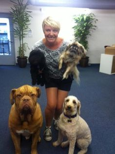 All of the Mind Movies dogs pose together with Co-Founder Natalie Ledwell at the office! Natalie is holding her puppy Bella, a cocker spaniel/yorkshire mix on the left and Gremlin, a Sleeve Pekingese on the right. The big French Mastiff in the lower left is Moose, and Rudy is the beautiful Labradoodle on the lower right. They sure do make the office more entertaining! :)  https://www.facebook.com/mindmovies