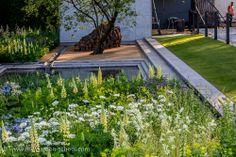 Chelsea Flower Show 2014, Laurent-Perrier, luciano giubbilei #Garden