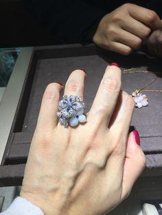 So pretty Chaumet, Vine Design, Jealousy, Sapphire, Diamonds, Turquoise, Display, Jewels, Gemstones