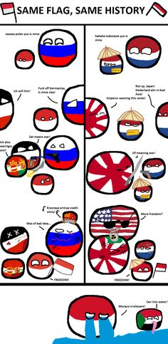 Technically not true, as Polish is the inverse one of the Indonesian Funny Art, The Funny, Poland Country, Greek And Roman Mythology, My Love Story, History Memes, Fun Comics, Historical Pictures, Just For Laughs