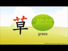 The Development of Chinese Characters - Grass