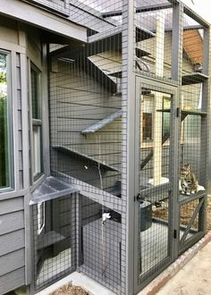 Discover recipes, home ideas, style inspiration and other ideas to try. Diy Cat Enclosure, Outdoor Cat Enclosure, Cage Chat, Outdoor Cats, Outdoor Cat Cage, Cat Run, Cat Shelves, Cat Playground, Cat Condo