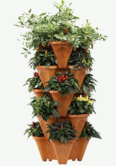 LARGE Vertical Gardening Stackable Planters by Mr Stacky  Grow More Using Limited Space And Minimum Effort  Plant Stack Enjoy  Build Your Own Backyard Vertical Garden  DIY Stacking Container System  For Growing Strawberry Tomato Pepper Cucumber Herbs Lettuce Greens  Much More  Indoor or Outdoor  Stackable Pots 5 ** Details can be found by clicking on the image.