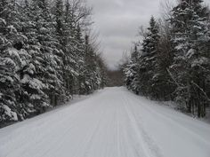 Photo by me.  Taken somewhere in the woods of VT on the snowmobile trails.