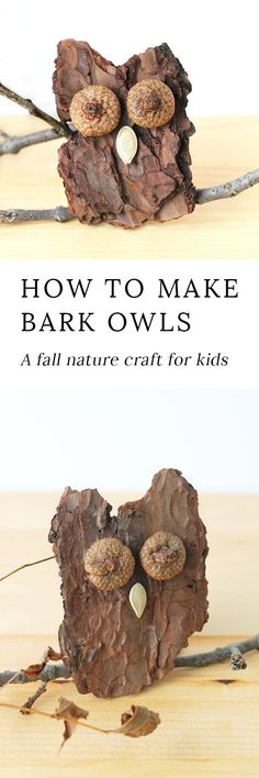 Kids of all ages will enjoy making Bark Owls from bark, acorns, twigs, and seeds after a fall nature walk. #fallcrafts via @https://www.pinterest.com/fireflymudpie/