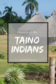 "The Taino Indians were the original indigenous inhabitants to most of the Caribbean and Florida. Taino means ""the good people"". Cuba History, Puerto Rico History, History Facts, Taino Tattoos, Puerto Rican People, Taino Symbols, Native American Spirituality, Puerto Rican Culture, Native American History"
