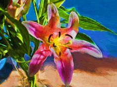 Day Lily Painted. http://www.saatchiart.com/Lloydg