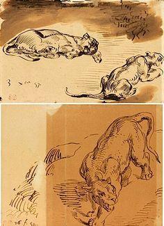 Eugène Delacroix, DEUX FEUILLES DANS UN MONTAGE : DEUX LIONNES ET UNE LIONNE