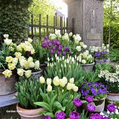 tulips garden care 45 Casual Diy Garden Pots Containers Design Ideas On A Budget - Gardening can be one of the most rewarding activities you will ever do. It can also be the most time consuming. It doesnt matter if your garden is bi. Tulips Garden, Garden Bulbs, Garden Pots, Planting Flowers, Flower Plants, Potted Garden, Diy Garden, Garden Care, Spring Garden