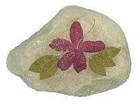 Pressed Flower Garden Stone:  Press flowers using traditional method or Microwave Flower Press. Wash rock thoroughly. Coat rock with a layer of decoupage. Arrange flowers and leaves on a flat surface of the rock. Coat over flowers with the decoupage solution. Let dry. Give entire rock 2 or 3 more coats, drying between coats.