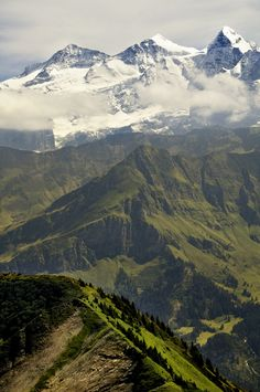 L ' Bernese Oberland is the area alpine of the canton of Bern in Switzerland .