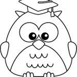 Molde coruja sabedoria