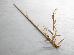 Transmutation (2014) by Alicja Kwade via König Galerie, Berlin