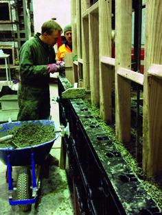Building industry embraces hemp-based concrete | News.com.au