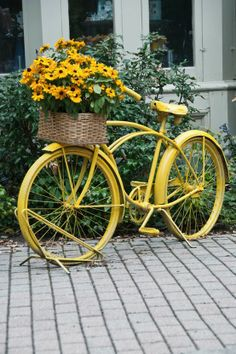 green & yellow ✿⊱╮