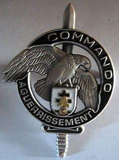 insigne 5 compagnie 4 rima - Recherche Google