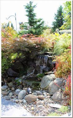 http://fishtailcottage.blogspot.com/2014/09/fishtail-cottages-garden-91514.html