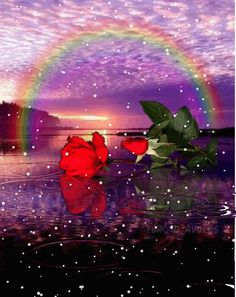 Flowers Gif, Beautiful Rose Flowers, Beautiful Gif, Pretty Pictures, Art Pictures, Corazones Gif, Gifs, Winter Landscape, Rainbow Colors