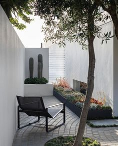 """Homes To Love on Instagram: """"Blurring the borders between sea, sky and earth, this garden delivers intimate, meditative spaces along with a sense of affinity with the…"""""""