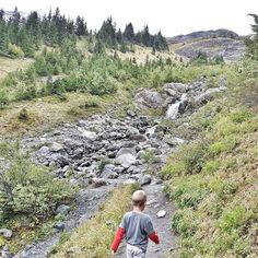 Wrześniowy spacer  po kamieniach prościutko do lodowca. A na blogu wpis o nimzajrzyj jeśli planujesz wyjazd na Mount Baker w stanie Waszyngton. . #letsgosomewhere why not @mtbakerskiarea in fall? . . . . . . . . . . . #createexplore #stayandwander #view #keepitwild #delicate #stayandwander #lifeofadventure #happyadventuring #travelforlife #intothewoods #intothewild #getoutstayout #getoutside #wildernessnation #wildme #instatravel #kanadasienada  #staywild #wildernessculture…