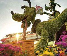 A Disney fica ainda mais encantadora nos meses de abril e maio. Neste período acontece o Festival Internacional de Flores e Jardinagem.