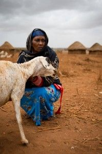 Somalia famine: A history that cannot be allowed to repeat itself