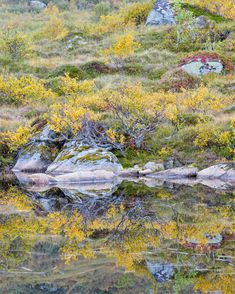 Autumn reflections - Flakstad, Lofoten, Norway