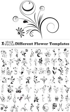 Different Flower Templates Vector