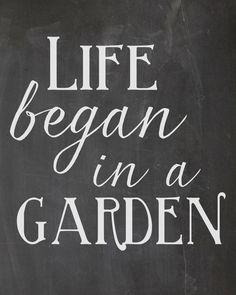 meet me in a garden
