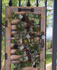 Wooden Window Shutter Succulent Planter Added to the Garden Gate Welcomes People to Your Garden