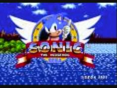 Sonic 2 from Sega Genesis. Loved this game!