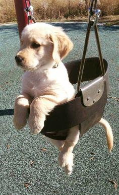 This swing ain't gonna push itself