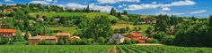 11 Wine Regions You Have To Visit In Europe (3)