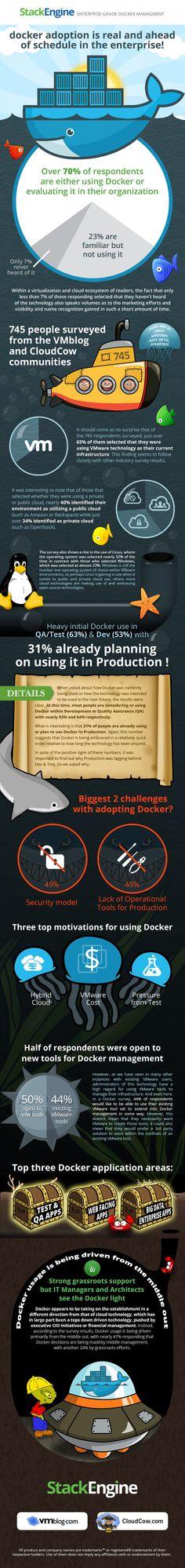 infographic-docker-survey.jpg (600×5083)