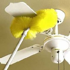 Cleaning paddle ceiling fan blades the easy way ceiling fan blades a long reach duster for ceilings and as a ceiling fan duster aloadofball Image collections