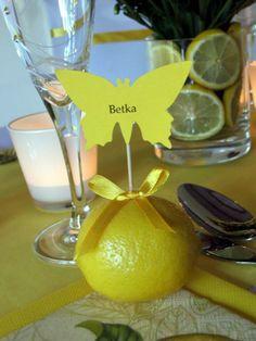 Motýliková menovka a citrón ako držiak
