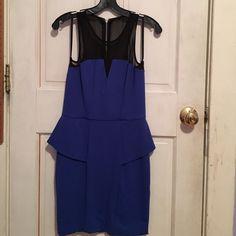 Nwot Blue Structured Dress