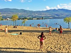 Gyro Beach, Kelowna Sand Volleyball Court, Desert Climate, Shade Trees, Selling Real Estate, Wineries, Old Pictures, British Columbia, Grateful, Dutch