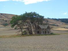 Abandoned house near Waterville, Douglas County, Washington, USA. By Robin on Wikimedia Commons.